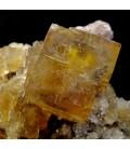 Fluorite - Vensat Puy de Dome  France