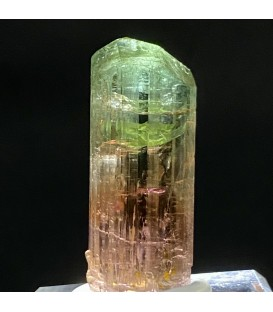 Multicolor tourmaline, Perfect quality and color, tourmaline crystal, from Goma, Nord-Kivu, DRC