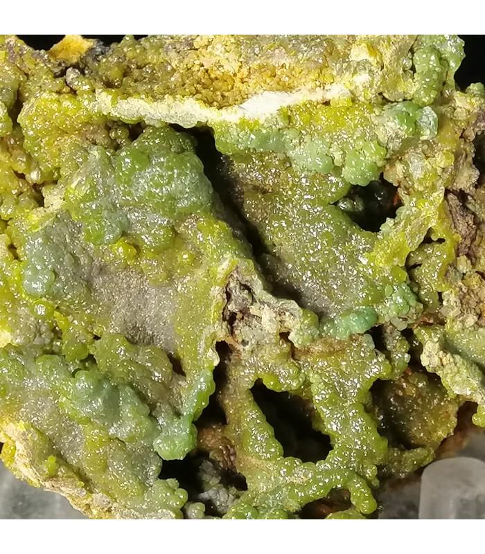 Piromorphyte - Donori Cagliari    Italy