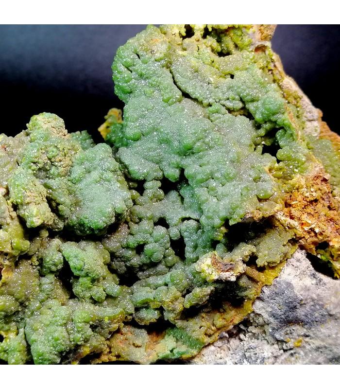 Piromorphyte  -  Donori Sardegna Italy