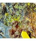 Veszeyilite -  La Scrava mine ,Liguria, Italy