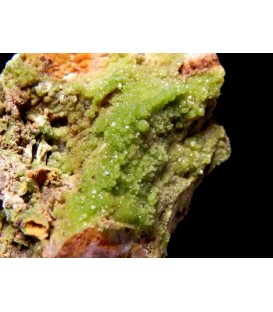 Pyromorphyte   - Crabulazzu mine Arbus Sardinia