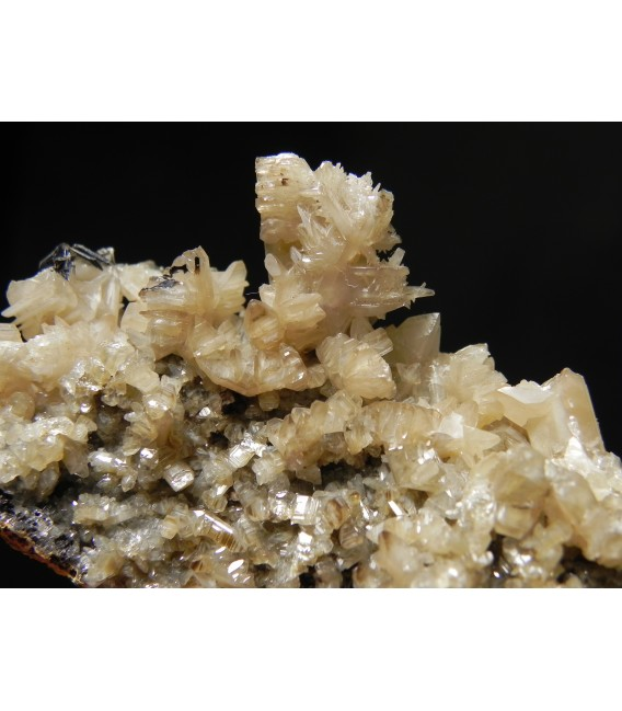 Cobaltite - Brazil Lake occurrence, Foster Township, Sudbury District, Ontario, Canada