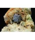 Carrolite -  Kamoya South II Mine  RDC