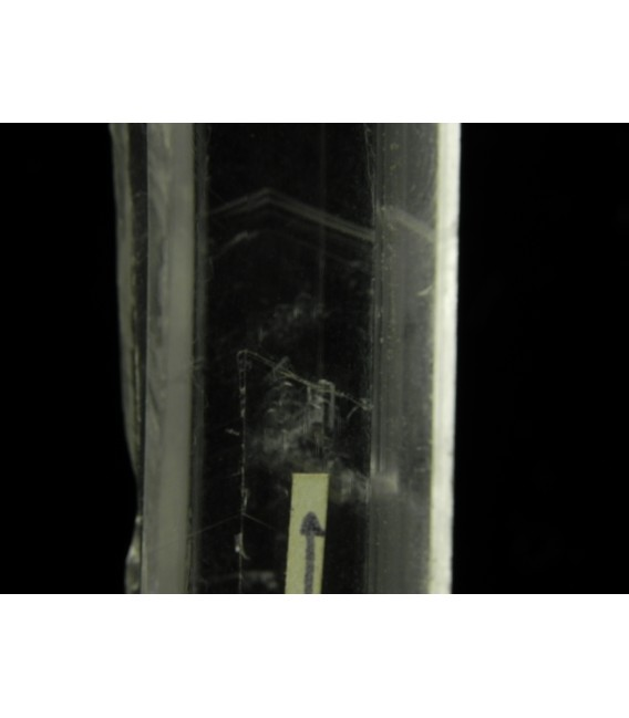 Plumbogummite - La Bosse Puy de dome  France
