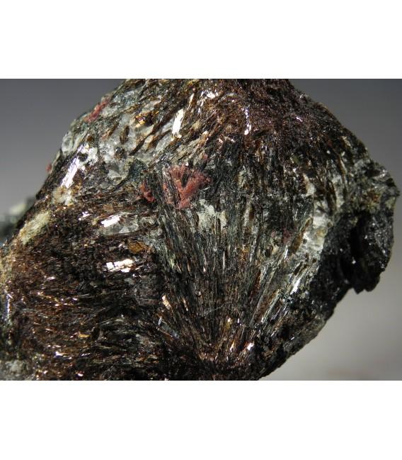 Astrophyllite - Khibiny Massif, Murmanskaya Oblast', Northern Region, Russia