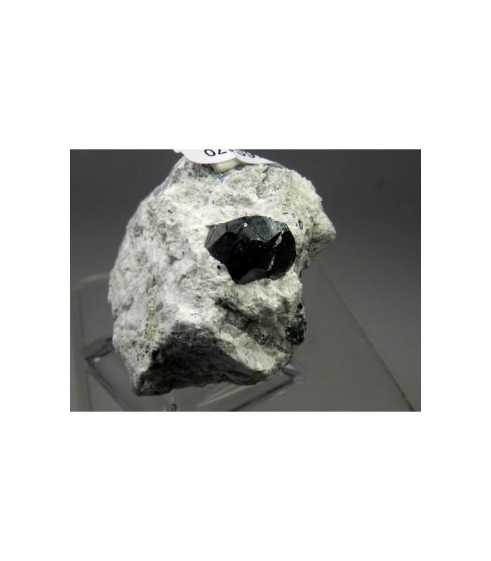 Bornite coating Pyrite - Milpillas Mine, Cuitaca, Mun. de Cananea, Sonora, Mexico