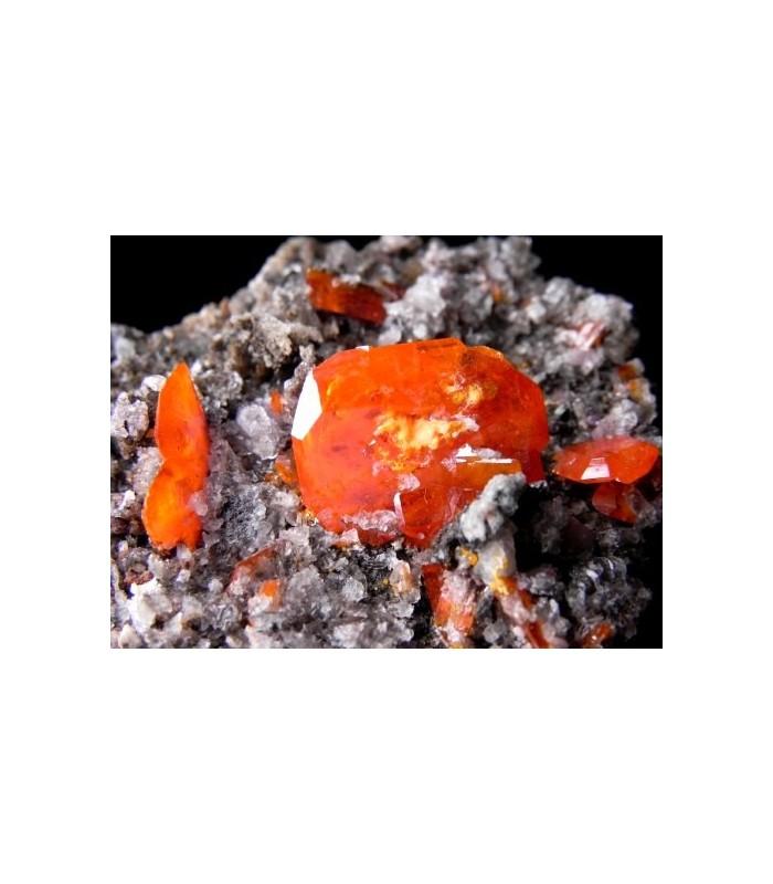Wulfenite - Red Cloud Mine, Silver District, Trigo Mts, La Paz Co., Arizona, USA
