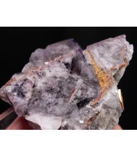 Fluorite  - Greenlaws Mine, Daddry Shield, Stanhope, Co. Durham, England, UK