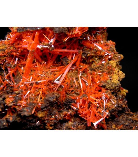 Crocoite  - Adelaide mine Tasmania Australia